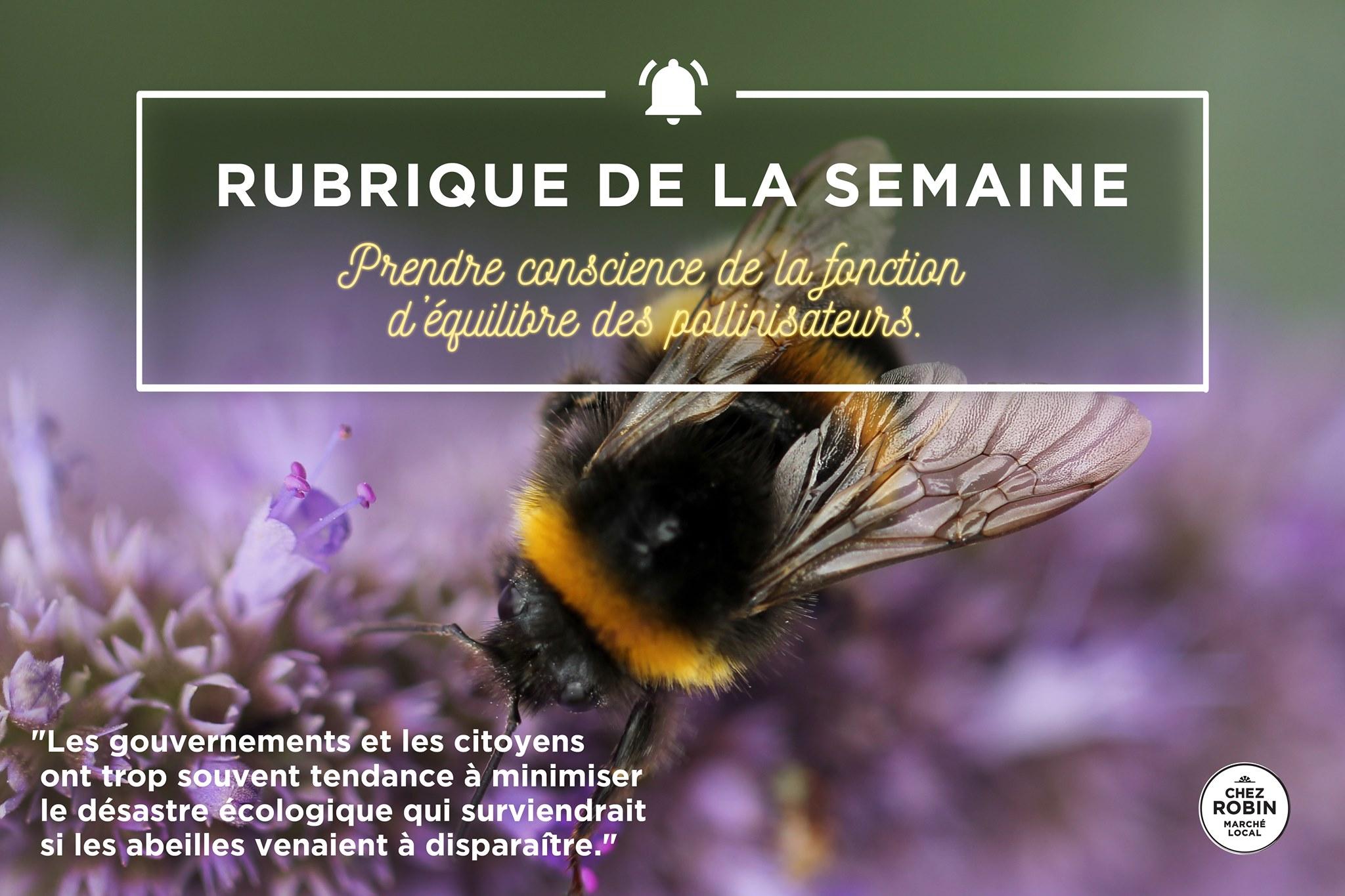 Prendre conscience de la fonction d'équilibre des pollinisateurs.