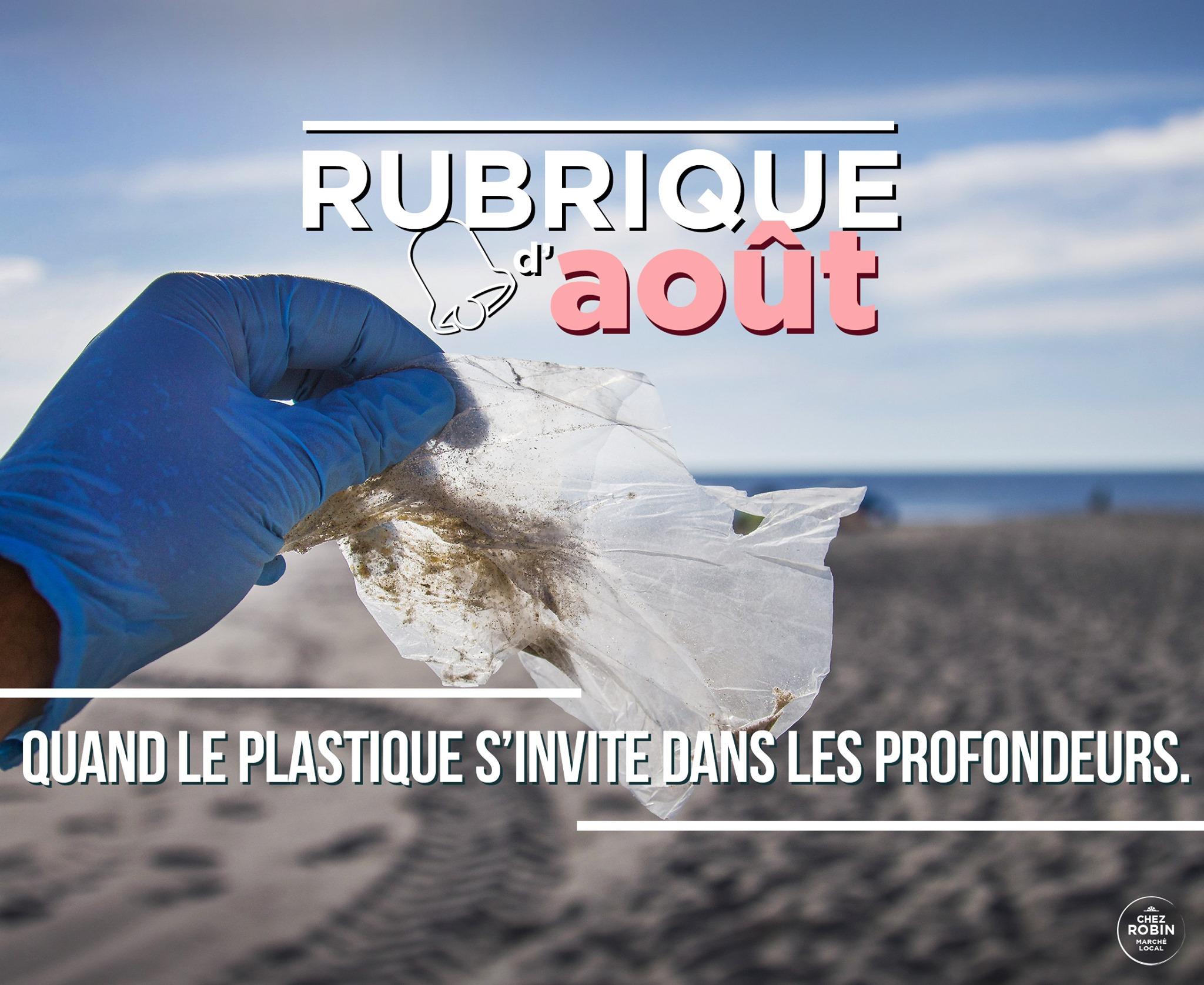 Quand le plastique s'invite dans les profondeurs marines